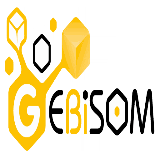 GEBISOM website